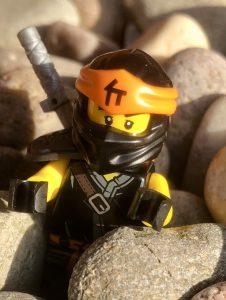 Lego Brick Reviews